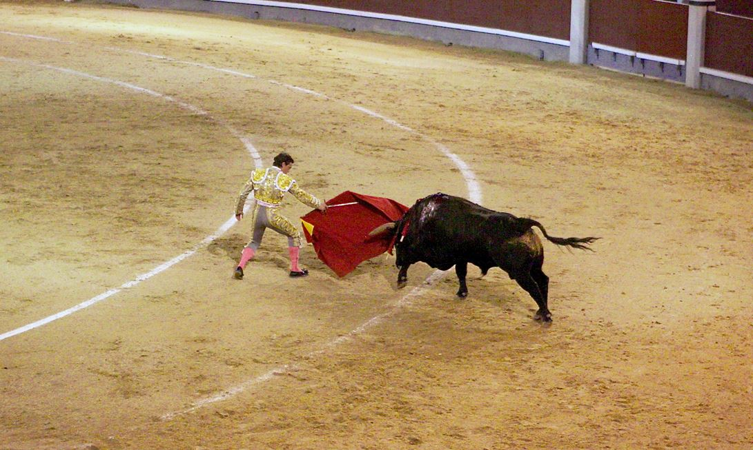 The matador holds the red cape. For the lesser bullfighters, magenta