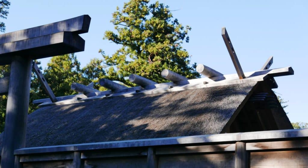 Forked roof beams