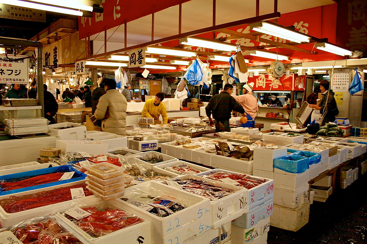 The tsukiji fish market tuna auction experience for Tokyo fish market