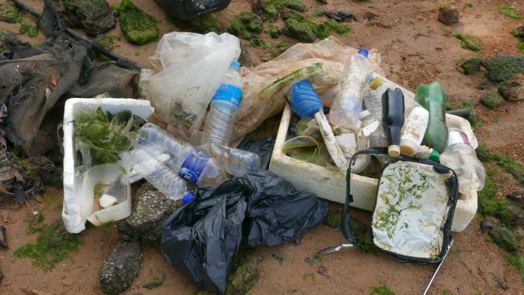 types of trash-collected-ubin